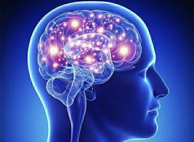 В споре мозг не позволяет человеку принять собственную неправоту