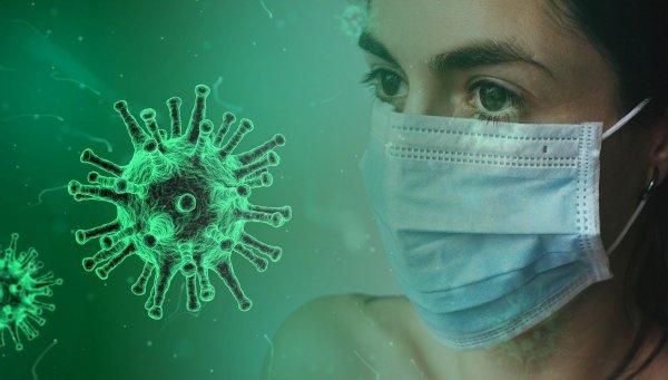 Учёные рассказали, как коронавирус мутировал и стал безопаснее