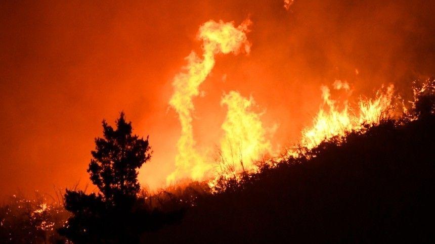 Лес полыхает в труднодоступном районе Сочи — фото