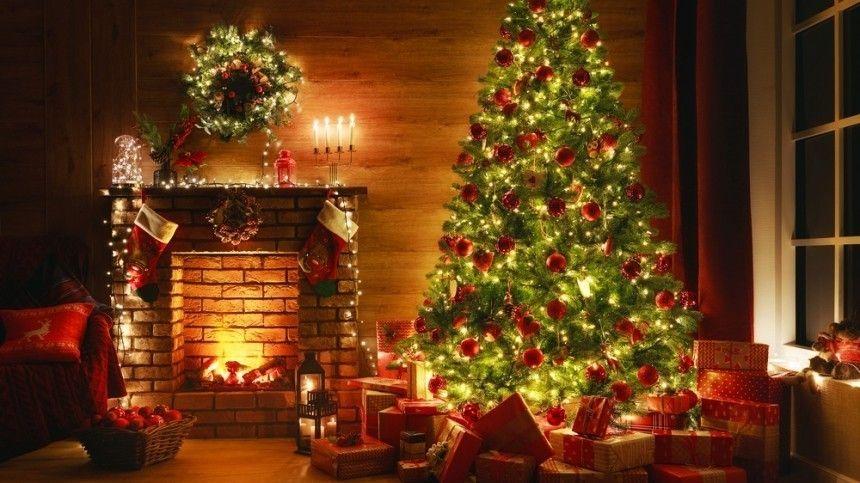 Куда поставить и как украсить елку, чтобы сбылись желания — совет астролога