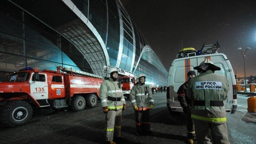 Уничтоженный в Чечне бандглаварь был причастен к теракту в «Домодедово»