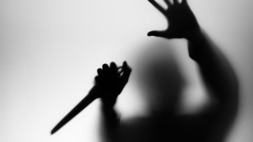 Подозреваемый в расчленении женщины в Ленобласти недавно похоронил жену