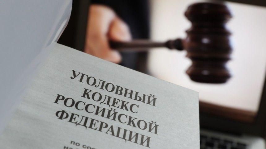 Верховный суд внес в Госдуму проект о понятии «уголовный проступок»