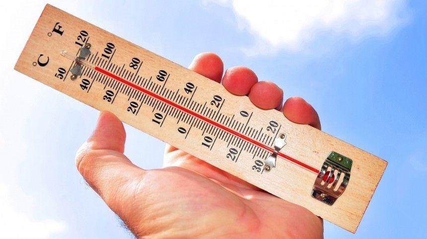 «Температурные качели»: главный синоптик Петербурга о погоде в конце февраля