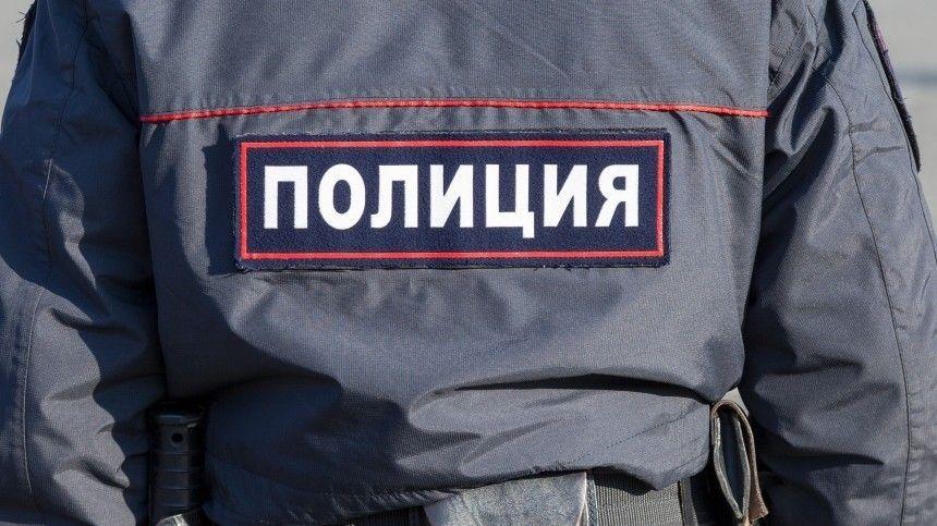 Пропавших на севере Красноярского края 11-летних девочек нашли