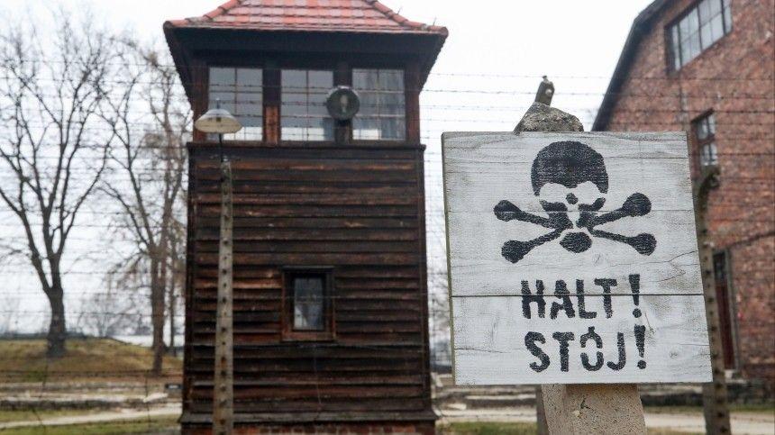 Германия впервые начала расследовать геноцид советских военнопленных — подробности