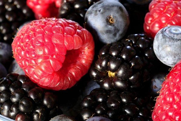 Чёрная малина уменьшила покраснения и отеки при аллергии