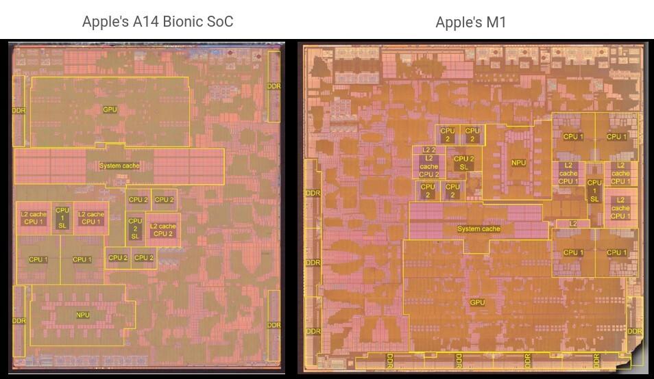 Эксперты сравнили устройство процессоров Apple для смартфонов и ноутбуков