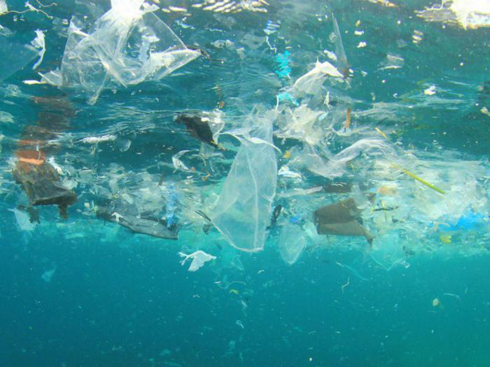 Раскрыт потенциальный источник загрязнения пластиком Северного Ледовитого океана