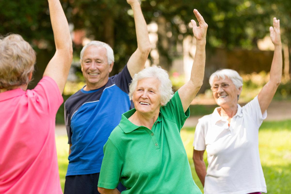 Найдены способы замедлить деградацию мозга в старости