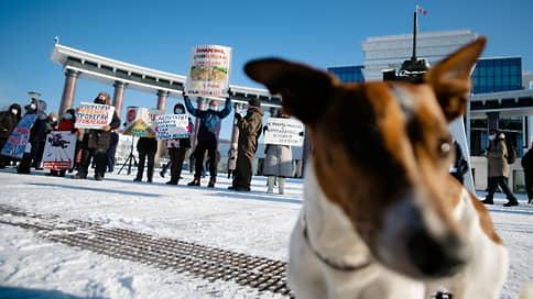 Строители возвели митинг // Расторгнутый подряд на строительство нового корпуса аэропорта в Южно-Сахалинске вывел на улицу несколько сотен участников