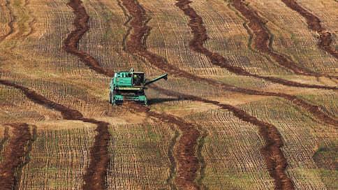 Плоды самоизоляции // Чем могут закончиться ограничения экспорта продовольствия