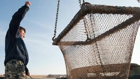 При одном важном уловии // В рыбопромышленной отрасли намечается крупное слияние