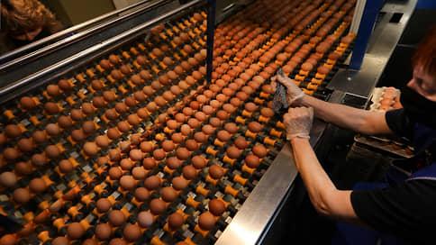 Яйца поразил куриновирус // Оптовые цены растут из-за птичьего гриппа