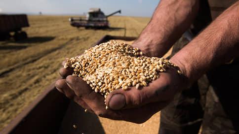 Миллиарды сыплются мимо аграриев // Основную выгоду от пошлин на зерно могут получить потребители