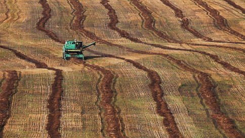Субсидии вместо госрегулирования // Агросектор просит правительство не искажать продовольственный рынок