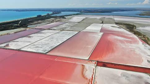 Живая соль // Чем богаты розовые озера Крыма