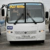 Омским перевозчикам запретили отменять маршруты
