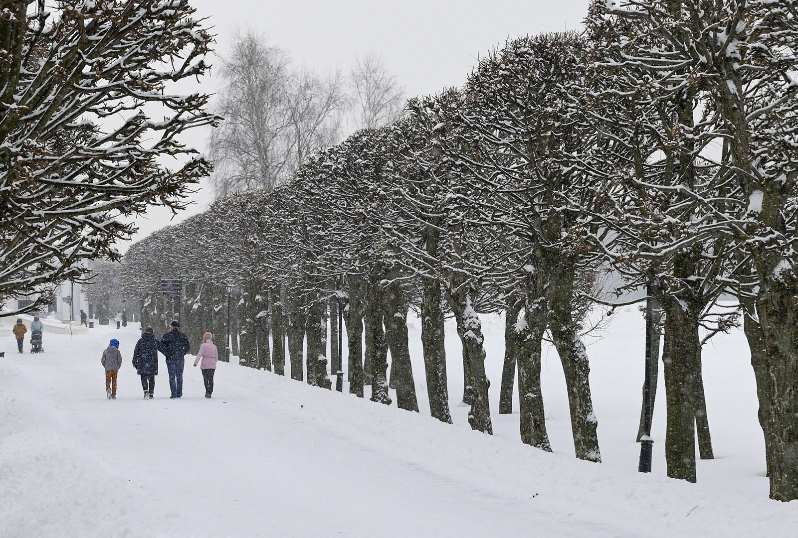 Облачно и небольшой снег: прогноз погоды на неделю