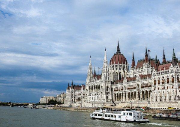 Украинского капитана судна, протаранившего катер в Венгрии, задержала полиция