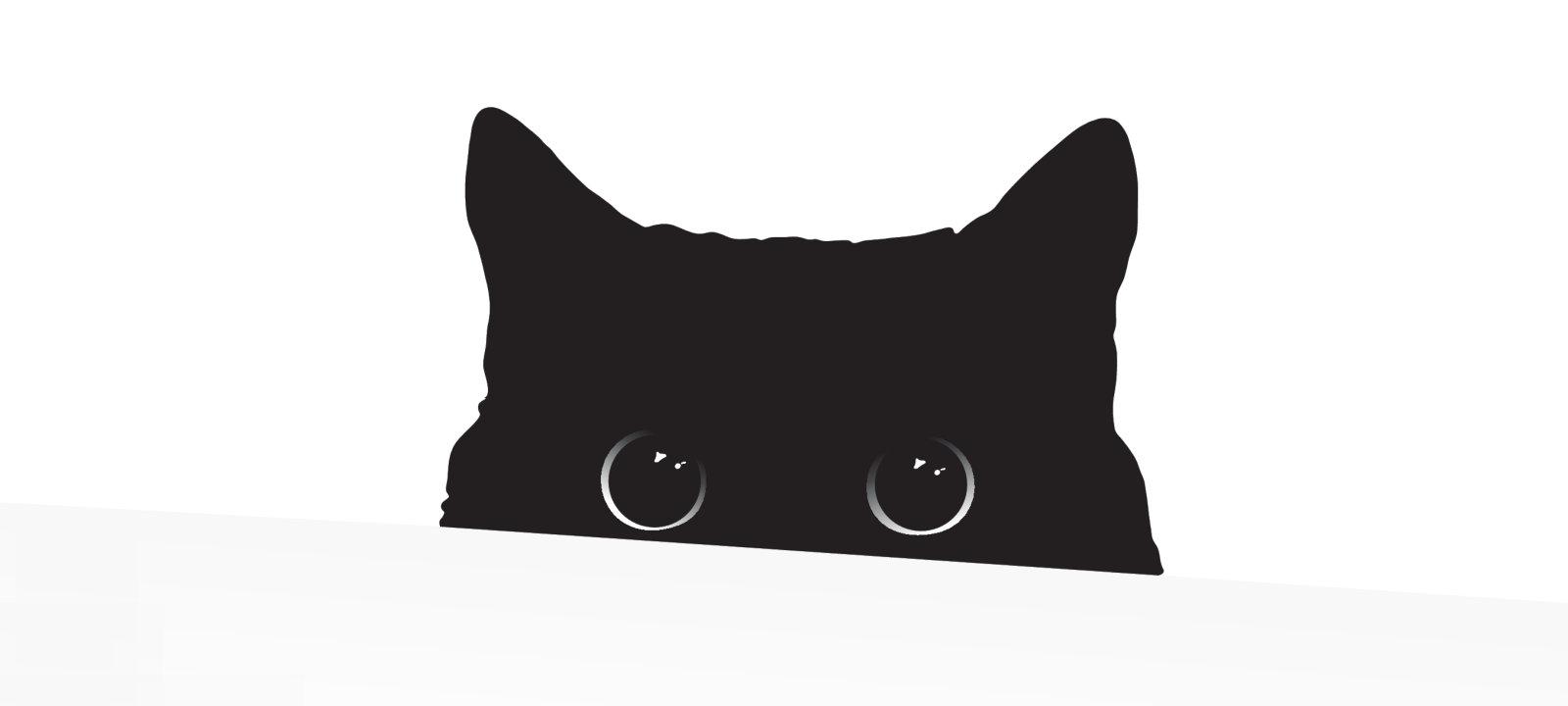 Кот атакует! Изучаем открытый стилер StormKitty