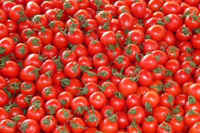 Россельхознадзор разрешил поставки томатов с 34 предприятий Узбекистана