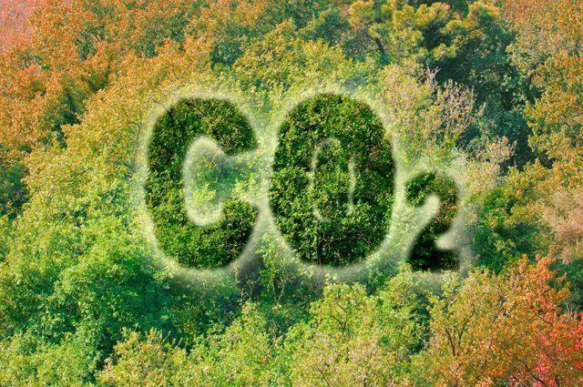 На пороге апокалипсиса. Учёные предрекают Земле новые природные катастрофы