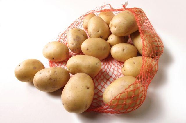 Минсельхоз РФ призвал поддержать инициативу о продаже мелкого картофеля