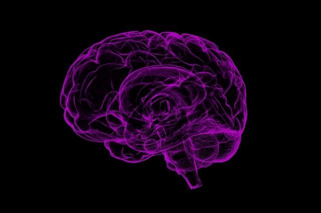 В РФ разрабатывают программу вживления чипов в человеческий мозг