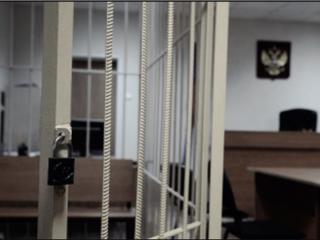 Костромской совратитель 11-летних девочек осужден на 15 лет