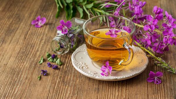 Иван-чай: польза и вред для организма