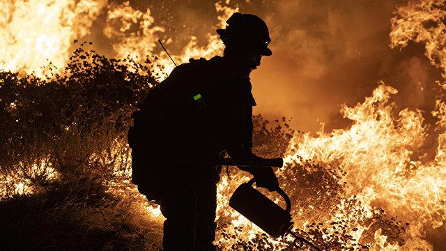 Aftonbladet (Швеция): в 2020 году разрушительная сила климатических угроз шокировала мир