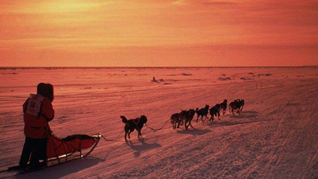 АБС (Испания): первопроходцы прибыли в Америку в компании собак