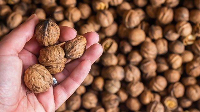 La Vanguardia (Испания): эти продукты чаще всего вызывают аллергию
