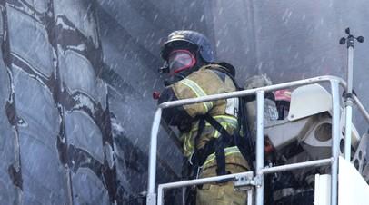 В МЧС прокомментировали новые правила противопожарного режима