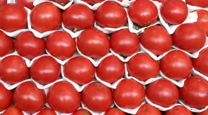 Эксперт прокомментировал запрет на поставки томатов и яблок из Азербайджана