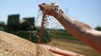 В Подмосковье рассказали о мерах поддержки фермерских хозяйств