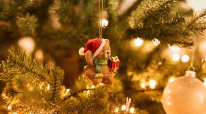 Эксперты рассказали о самых популярных видах досуга россиян в новогодние праздники