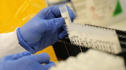 В ФРГ за сутки выявили более 17,5 тысячи случаев коронавируса
