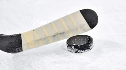 Юные хоккеисты устроили массовую драку во время матча