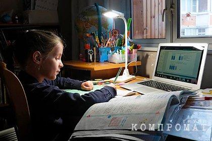Депутат Госдумы сравнил традиционное и онлайн-обучение