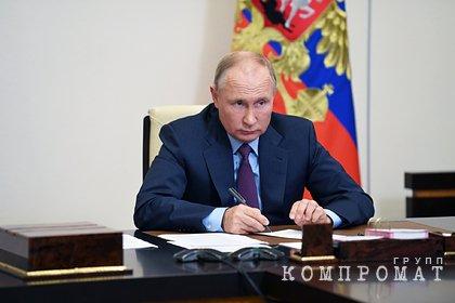 Путин признал возможную опасность для истории в создании нового отдела при СКР