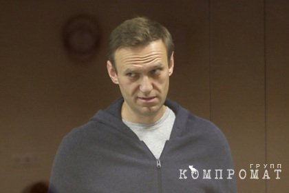 Эксперт объяснил разницу между клеветой и оскорблением в деле Навального