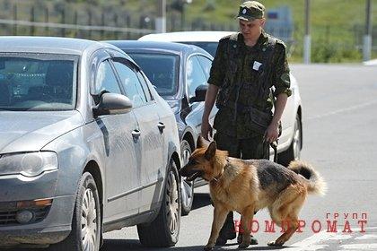 Задержанного ФСБ бойца ОМОН отправили на зону за килограмм наркотиков