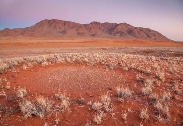 Тайны «кругов фей» в Намибии наконец разгаданы