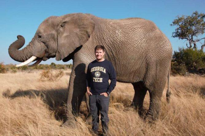 JRSI: слоны могут хранить в своем хоботе до девяти литров воды