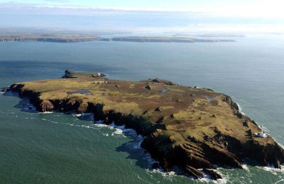 На крошечном острове найдены личные вещи древних людей. Их раскопали кролики