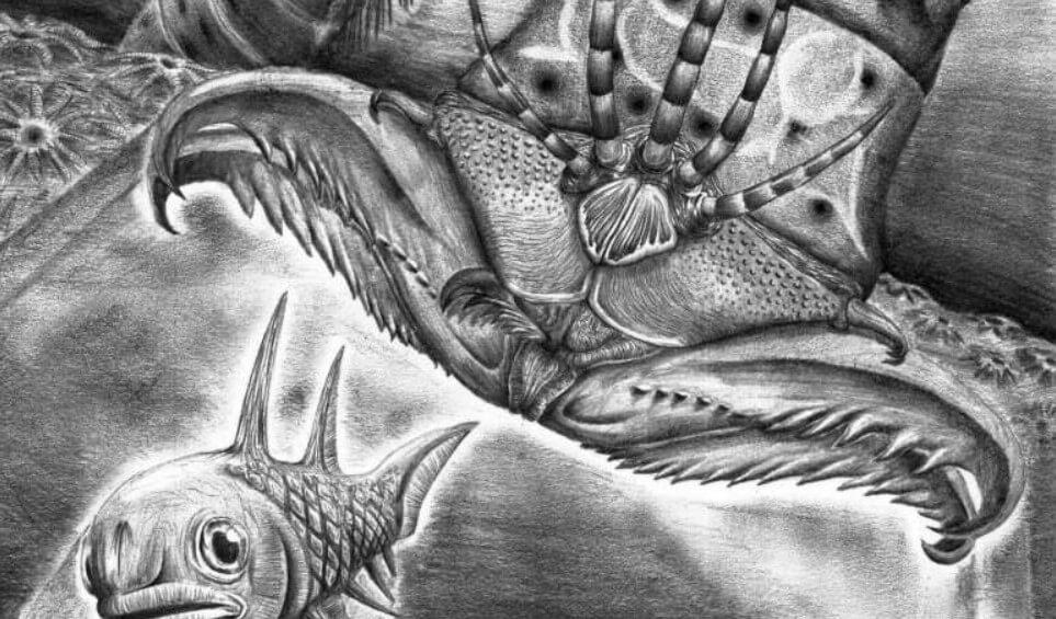 Самые длинные черви в мире: когда они жили и как выглядели?