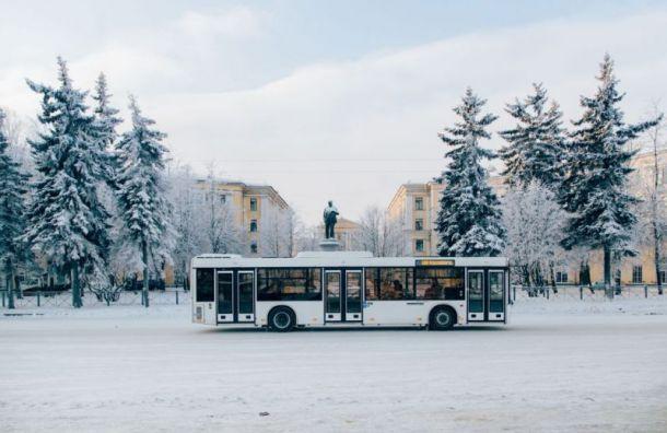 Смольный рассказал, как будет работать транспорт в новогодние праздники