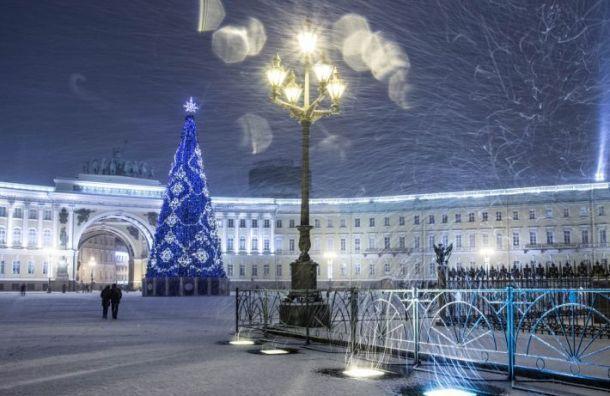 Новогодняя елка останется на Дворцовой площади до конца января